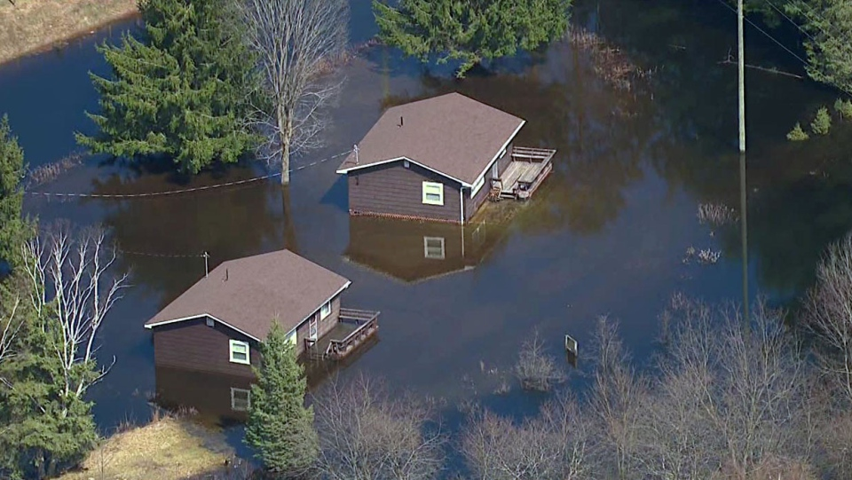 After Flooding many Pest Problems can occur