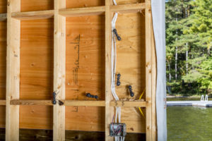 Carpenter Ants Can Do Significant Damage