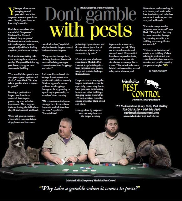 Don't gamble with Pests!